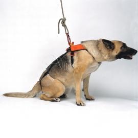 Hundegurt Smeus