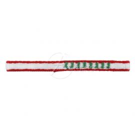 Edelweiss Express Dyneema 10 mm